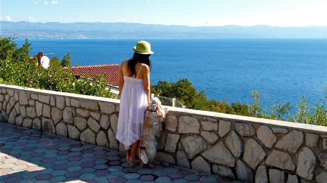 Urlaub in Kroatien mit Hund