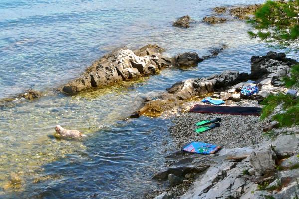 Naturstrand auf der Insel Ciovo