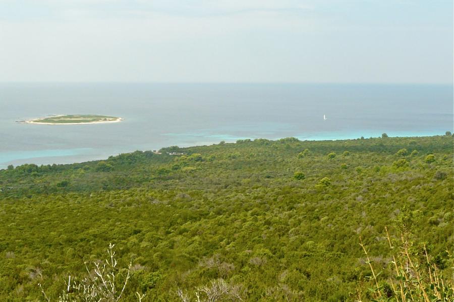 Die Westküste von Dugi otok