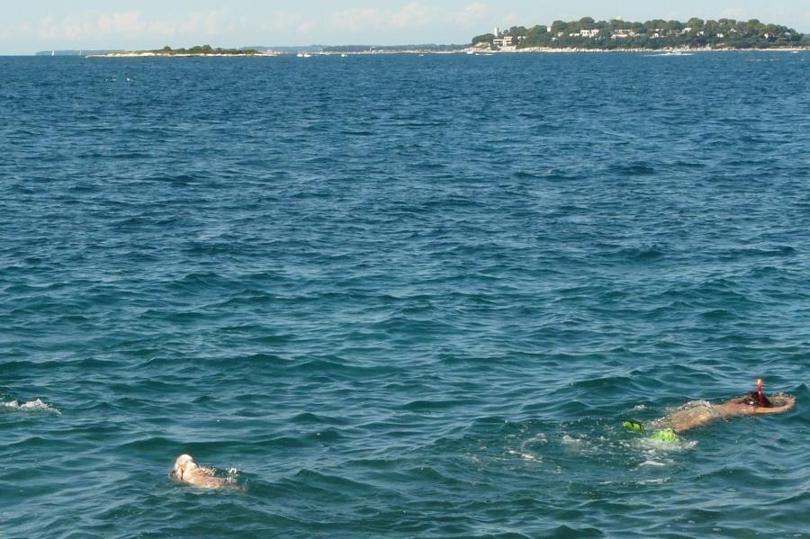 Zelena Laguna mit Hund